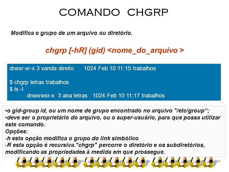 chgrp [-hR] (gid) <nome_do_arquivo >